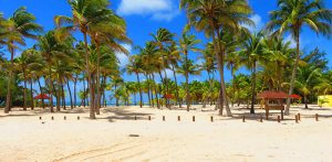 Guadeloupe : comment organiser son voyage ?